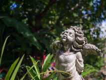 Closeup vintage beautiful charm cement angle statue in the garde Stock Photos