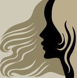 Closeup vintage woman with beautiful long hair Stock Photography