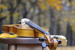 Closeup with violin Stock Photography