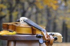 Closeup with violin Stock Photography