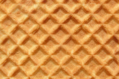 Closeup of wafer Royalty Free Stock Photography