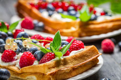 Closeup of waffels with cream and berry fruits Royalty Free Stock Image