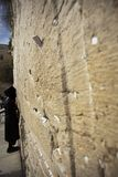 Praying at the Wailing Wall. A closeup of the Wailing Wall in the old city of Jerusalem. In the cracks between the bricks there are numerous notes with pleads royalty free stock images