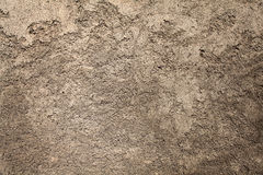 Closeup wall. Closeup cement wall textured background Stock Photos