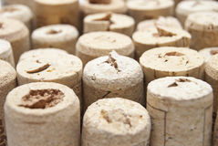 Closeup of a wall of used wine corks. A random selection of used. Wine corks Royalty Free Stock Photography