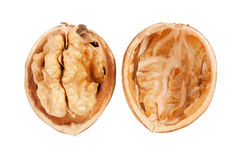 Closeup of a walnut Royalty Free Stock Photography