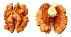 Closeup of a walnut isolated Stock Photos