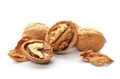 Closeup of a walnut Royalty Free Stock Photography