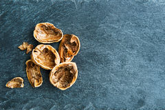 Closeup on walnut shells on stone substrate Royalty Free Stock Photo
