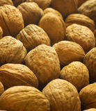 Closeup of walnuts background. Stock Photo