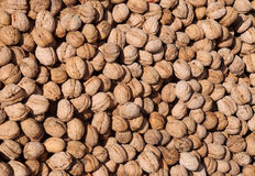 Closeup Walnuts on the Market. Closeup image of walnuts on the market in Turkey Stock Images