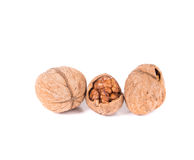 Closeup of walnuts. Royalty Free Stock Photo