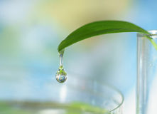 Closeup of water drop with earth sphere reflection Royalty Free Stock Images