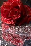 Closeup of water drops Royalty Free Stock Photos