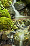 Closeup of water flowing over mossy rocks. In creek stock image