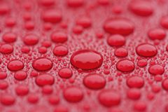 Closeup waterdrops on red ceramic coated paint surface. Shallow focus stock image