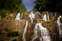 Closeup Waterfall Streams on Rocks between Plants. Closeup wonderful high waterfall streams fall along steep rocks between shady tropical plants royalty free stock image