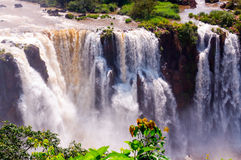 Closeup Waterfalls, Iguassu Falls, in Brazil Stock Photos