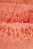Closeup watermelon Stock Photo