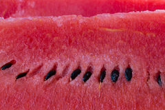 Closeup of watermelon Stock Photos