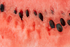 Closeup of watermelon with seeds in it Royalty Free Stock Photography