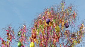 Closeup of waving Easter fringes and eggs on tree. This video shows a detailed closeup of waving Easter fringes and eggs on tree. Video was taken during spring stock video