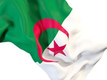 Waving flag of algeria. Closeup of waving flag of algeria. 3D illustration Royalty Free Stock Photography