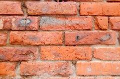 Closeup of weathered red brick wall Royalty Free Stock Photos