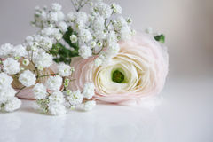Closeup of wedding bouquet made of Persian buttercups, Ranunculus and white baby`s breath Gypsophila flowers lying on