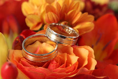 Closeup of wedding rings on background of flowers Stock Photos