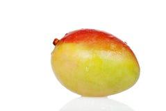 Closeup wet mango Royalty Free Stock Image