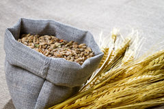 Closeup wheat seed in canvas bag Stock Image