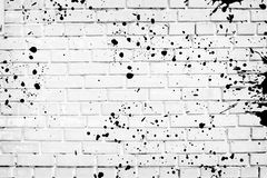 Closeup of white brick wall Stock Image