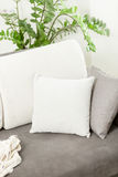 Closeup of white decorative cushion lying on gray sofa at living. Closeup photo of white decorative cushion lying on gray sofa at living room stock images