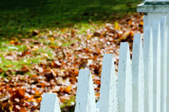 Closeup of white picket fence with autumn leaves Royalty Free Stock Photos