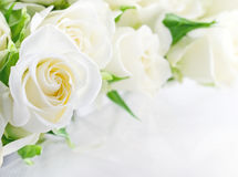 Closeup of white roses Royalty Free Stock Images