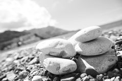 Closeup of white stones on the pebbly beach; filtered retro style; monochrome Stock Images