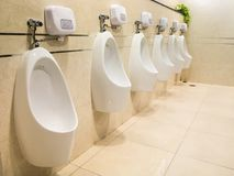 Urinals for men in toilet room Stock Images