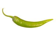 Closeup of a whole green chili Royalty Free Stock Photos