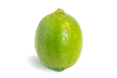 Closeup of a whole ripe lime fruit with waterdrops Royalty Free Stock Photos