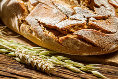 Closeup of wholemeal bread on old wooden table Royalty Free Stock Image