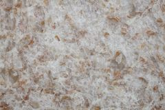 Closeup of wholemeal bread texture. With visible grains Stock Image