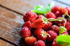 Closeup of wild strawberries on wooden table Stock Images