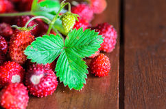 Closeup of wild strawberries on wooden table Royalty Free Stock Image
