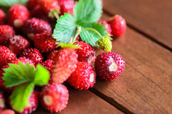 Closeup of wild strawberries on wooden table Stock Image