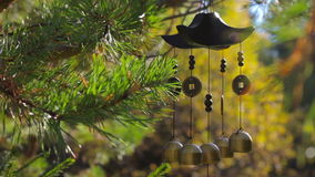 Closeup wind chimes in autumn garden. Happiness, success, power, wealth stock footage