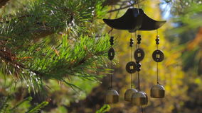 Closeup wind chimes swaying in the wind at autumn garden. Happiness, success stock video footage