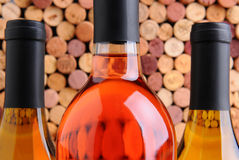 Closeup Wine Bottles in Front of Corks Stock Photo
