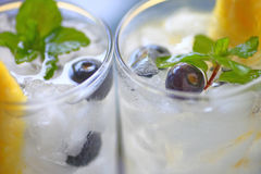 Closeup wine coolers with fresh fruit Royalty Free Stock Photo