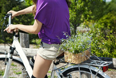 Closeup of woman with bicycle and basket of summer flowers. Stock Image